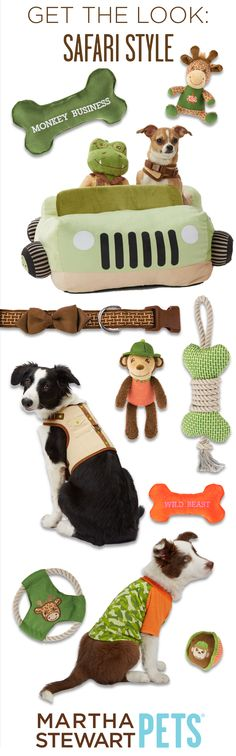A jeep bed, safari vest, and lots of animal print! The new #MarthaStewartPets Summer 2015 is here and only @petsmartcorp !