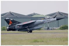 Dassault Aviation, France, Military Aircraft, Tigers, Airplane, Planes, Fighter Jets, Meet, Hunting