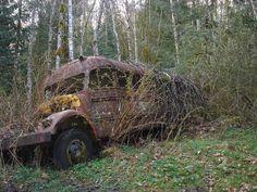 Abandoned Bus x #abandoned #photography