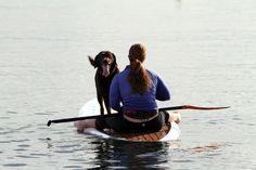 Valentine Paddle Boarding