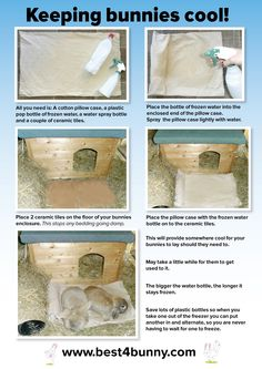 A cheap & easy quick way to keep bunnies cool in hot weather. Find more helpful tips here http://best4bunny.com/keep-rabbits-cool-summer-simple-top-tips/