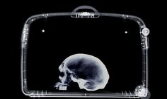 #Professor #arrested after human #skull found in luggage...