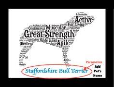 Traits of the Staffordshire Bull Terrier In the early 1800s dog fighting became a source of entertainment. Selective breeding resulted in a small nimble dog with incredibly strong jaws that was specif