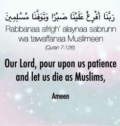 Islamic Prayer, Islamic Teachings, Islamic Quotes, Arabic Quotes, Islamic Art, Hadith Quotes, Quran Quotes, Religion, Learn Islam