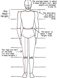 10 Best Human Body Proportions For Art And Maths Images In 2020 Drawing People Human Body Proportions Body Proportions