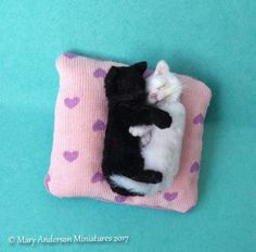 1:12 OOAK realistic 2x SLEEPING KITTENS Handmade Dollhouse Cat by Mary Anderson