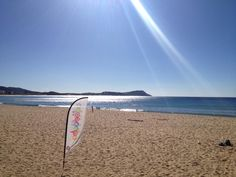 Terrigal, our local seaside B & B, Surfboard, Seaside, Beautiful, Beach, Surfboard Table, Skateboarding, Coast, Surfboards