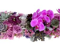 Feasting table floral table runner.  How to video with fabulous Pantone Radiant Orchid hued flowers and succulents.  Floral Design Institute