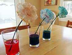 Dyeing flowers from Gift of Curiosity