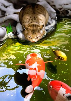 tabby cat nose-to-nose with a koi fish, illustration by makoto muramatsu, els gats de makoto muramatsu, los gatos de makoto muramatsu I Love Cats, Crazy Cats, Cute Cats, Art And Illustration, Cat Illustrations, Carpe Koi, Fish Art, Japanese Art, Cat Art