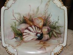Cheryl Meggs - Seashells