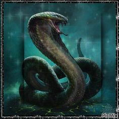 Incredible illustration of serpent. Analogous colour scheme and effective backlighting to emphasise shape and form of snake. Snake Painting, Snake Drawing, Snake Art, Snake Totem, Snake Sketch, Cobra Tattoo, Snake Tattoo, Fantasy Creatures, Mythical Creatures
