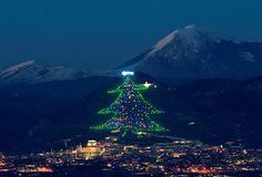 Árvore de Natal de Gubbio, Itália. Esta árvore está situada na cidade de Gubbio, em Itália, e é considerada a maior árvore de Natal do mundo. Ela encontra-se no Monte Ingino, tem uma altura de 750 metros e uma largura de 450 metros. Está repleta de luzes coloridas que constituem a sua decoração e a estrela, que fica no topo é formada por 250 pontos de luz.
