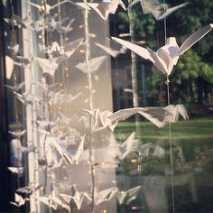 // Grullas + Luces //#labambientaciones #decor #love #wedding #casamiento #nicoyrochi