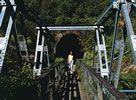 Explore KARANGAHAKE GORGE New Zealand