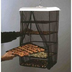 hanging food dehydrator (try to diy this?)