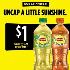 Enjoy the taste of summer with Lipton® Green Tea Citrus and Iced Tea Peach. Click to get ONE 20oz bottle for $1 now at Dollar General. #dollargeneral Resin Patio Furniture, Diy Garden Furniture, Outdoor Furniture, Furniture Ideas, Modern Furniture, Lipton Green Tea, Do It Yourself Organization, Organization Ideas, Kitchen Organization