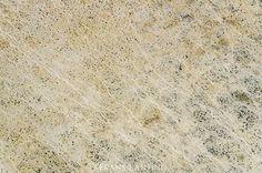 Desert landscape crisscrossed by game trails, Etosha National Park (aerial), Namibia by Frans Lanting