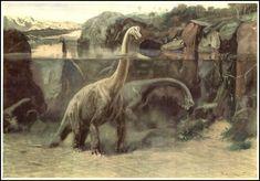 Brachiosaurus | Zdeněk Burian (1905-1981) | Prehistoric Animals (1960) | B. as Jurassic hippo!