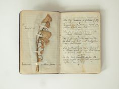 antique journal