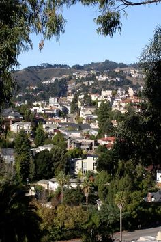 Oakland | Berkeley Hills