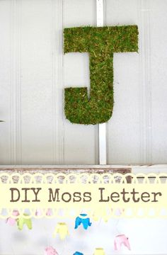 DIY Moss Letters: This tutorial will show you the most inexpensive way to get a moss letter just the style and size you want it! www.huntandhost.net