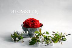 17.mai pynt Blomster © Lev Livet Lett Lokki
