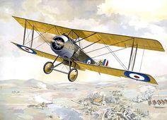 Sopwith Strutter single seater bomber - Taras Shtyk - box art Roden