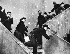 사진작가 이형록( 李亨祿)의 작품을 통해 본 그때 그시절 : 네이버 블로그 Korean Photography, Concert, Photographers, Concerts