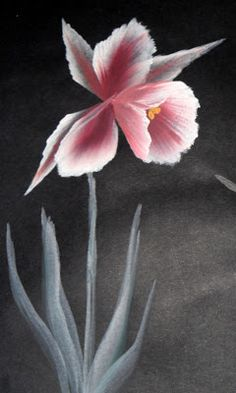 Simply One-Stroke: Poppies, orchids, calla lilies: almost fail-dot-com