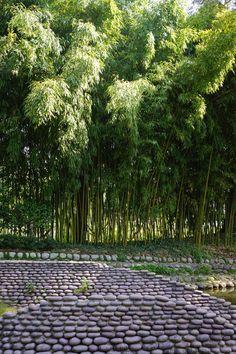 Albert Kahn Garden, Paris, France, April 2015, Agata Byrne garden travels