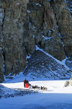 Lillehammer, Norway - dog-sledding outside town