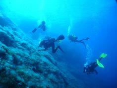 Ibiza. Grupo de buceo - Group diving