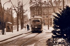 Vienna, My Dream, Snow, City, Outdoor, History, Outdoors, Cities, Outdoor Games