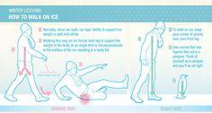 how-to-walk-on-ice-infographic-penguin.jpg (700×374)