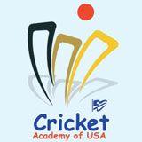 North Atlanta Cricket Club Cricket Logo, North Atlanta, Logo Ideas, Club, Logos, Design, Logo