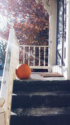 Pumpkin in Providence