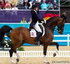 I chose this picture to go on my future board as one day I would love to represent Australia at the Olympics in horse riding. To get to the Olympics would take a lot of hard work and dedication although it would be so rewarding and an unforgettable experience!