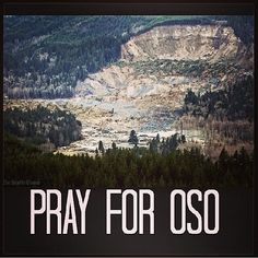 "From ""Social media updates on Oso landslide"" story by KING 5 News on Storify — http://storify.com/king5seattle/social-media-updates-on-oso-landslide"