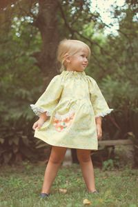 Betsy's Dress Brownie Goose