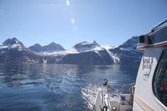 Wer nach Grönland zum Angeln kommt, übt sein faszinierendes Hobby in einer grandiosen Naturlandschaft aus. Glasklare Gebirgsflüsse, schneebedeckte Berge und zugefrorene Fjorde laden zum Hochseeangeln oder Tiefseefischen ein. Hier fängt man vor allem den arktischen Saibling und in einigen Flüssen auch Lachse. Vor der Küste, beim Hochseeangeln fängt man insbesondere Heilbutt, Dorsch, Rotbarsch, Seewolf und den Grönlandhai. #Grönland #Kalaallit Nunaat #Grønland