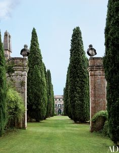 Garden Design Ideas : Musician Ned Lambton Restores His Magnificent Tuscan Villa, a brick gateway topped with busts and obelisks frames a view of a cypress allee and Villa Cetinale bey… Landscape Designs, Landscape Architecture, Formal Gardens, Outdoor Gardens, Jardin Decor, Italian Garden, Italian Villa, Tuscan Garden, Tuscan House