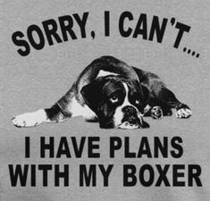 """Discover more relevant information on """"boxer pups"""". Look into our internet site. Discover more relevant information on """"boxer pups"""". Look into our internet site. Boxer Mom, Boxer And Baby, Dog Mom, Boxer Puppies, Chihuahua, Dogs And Puppies, Doggies, Boxer Breed, Yorkie"""