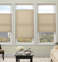 Window Treatment Ideas - inside window mount top down/bottom up and cordless Cellular Shade: Light Filtering. even washable. Living Room Windows, House Windows, Blinds For Windows, Curtains With Blinds, Home Living Room, Window Blinds, Modern Curtains, Door Curtains, Window Seats