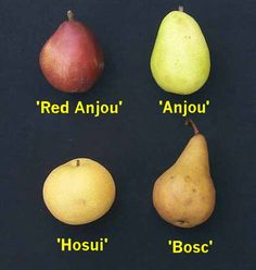 pears and......