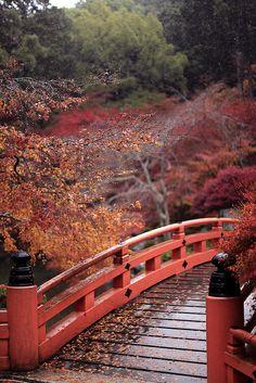 Daigo-ji temple, Kyoto, Japan 醍醐寺 京都