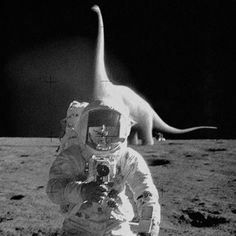 Image shared by Miss Retro Space. Find images and videos about art, black and white and hipster on We Heart It - the app to get lost in what you love. Trash Collector, Photoshop, Pulp, Life On Mars, Ex Machina, Belle Photo, Funny Pictures, Funny Pics, Funny Memes