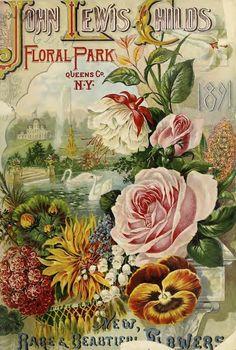 John Lewis Childs - Floral Park, Queens Co. N.Y. - 1891