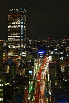 Tokyo Skyline Sunset - 4 by Kurt_Hammond on Flickr.