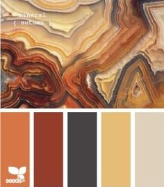 Amazing pallet for coloring your home. For more updates http://lnkd.in/bm_zRPR #RealtorExclusive #RealEstate